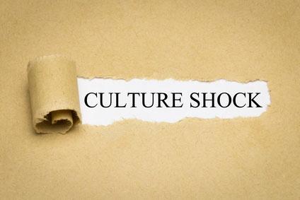 Phänomen Kulturschock Artikel